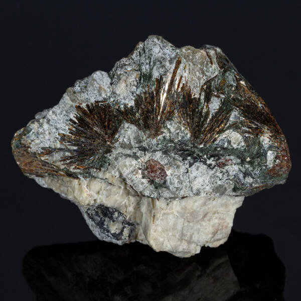 asztrofillit